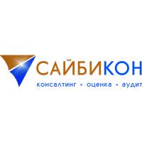 Логотип компании «Сайбикон»