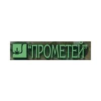 Логотип компании «Центральный научно-исследовательский институт конструкционных материалов Прометей (ЦНИИ КМ)»