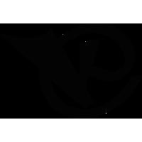 Логотип компании «KRAWSTER.RU»
