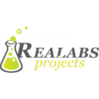 Логотип компании «Realabs Projects»