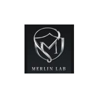 Логотип компании «Merlin Lab»