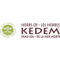 Логотип компании «Кедем»