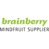 Логотип компании «Brainberry»