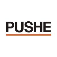 Логотип компании «PUSHE»