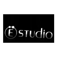 Логотип компании «Web Ё Studio»