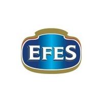 Логотип компании «EFES Россия»