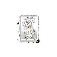 Логотип компании «Шоу-Рум магазин Цацки»