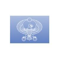 Логотип компании «Кайт Электроникс»