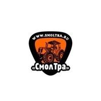 Логотип компании «Торговый Дом СМОЛТРА»