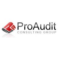 Логотип компании «ПроАудит»