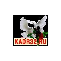 Логотип компании «Студия Кадр Брянск»