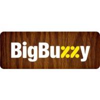Логотип компании «BigBuzzy»