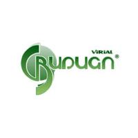 Логотип компании «Вириал»