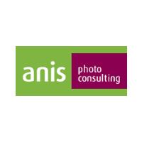 Логотип компании «Anis»