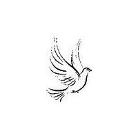 Логотип компании «Кадры Света»