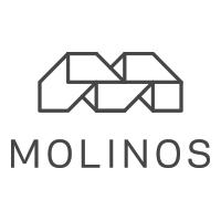 Логотип компании «Molinos»