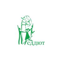 Логотип компании «Самарский Дворец детского и юношеского творчества»