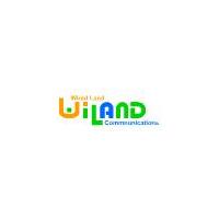 Логотип компании «ВиЛэнд»