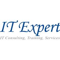 Логотип компании «IT Expert»