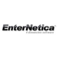 Логотип компании «EnterNetica»