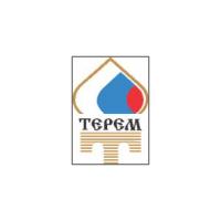 Логотип компании «Терем»