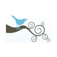 Логотип компании «Индивидуальный предприниматель Горшунова Елена Сергеевна»