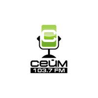 Логотип компании «Радио Сейм»