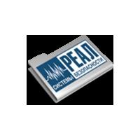 Логотип компании «Реал Системы Безопасности»
