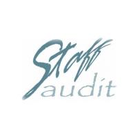 Логотип компании «Стафф Аудит»