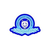 Логотип компании «Волк-Тамбов»