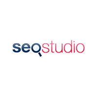 Логотип компании «Seo Studio»