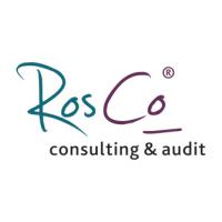 Логотип компании «РосКо - Консалтинг и аудит»