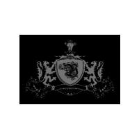 Логотип компании «Venso Group»