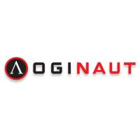 Логотип компании «Loginaut»