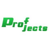 Логотип компании «ProfProjects GP»