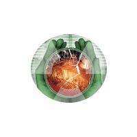 Логотип компании «Чернобыльская АЭС»