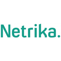 Логотип компании «Netrika»