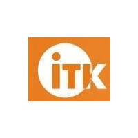 Логотип компании «IT Consultant»