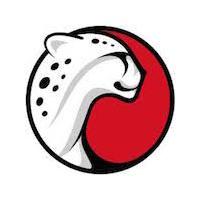 Логотип компании «Playtika»