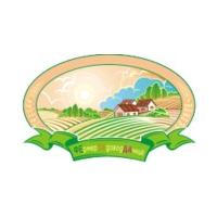Логотип компании «fesada»