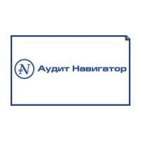 Логотип компании «Аудит-навигатор»