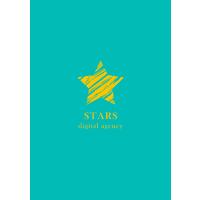 Логотип компании «Маркетинговое агентство STARS»