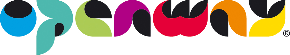 Логотип компании «OpenWay Group»