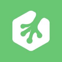 Логотип учреждения доп. образования «Treehouse»