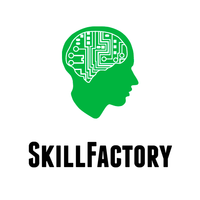 Логотип учреждения доп. образования «SkillFactory»