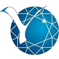 Логотип высшего учебного заведения «Северо-Восточный федеральный университет имени М. К. Аммосова »