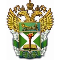 Логотип высшего учебного заведения «Российская таможенная академия»