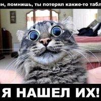 mshehov