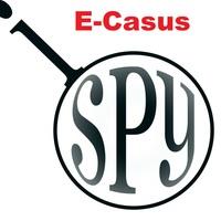 ecasus2015