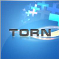 torn-12354